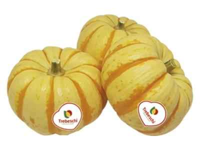 Abóbora Pumpkino Várias gramaturas Disponíveis